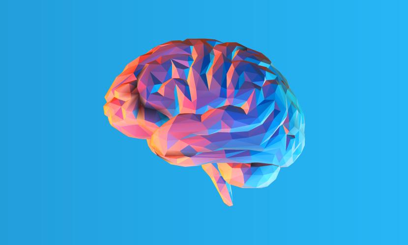脳を使うとカロリーが消費されるのか?