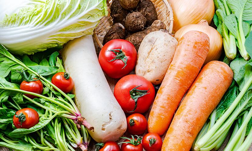 善玉菌を増やす「プレバイオティクス」の食品とは