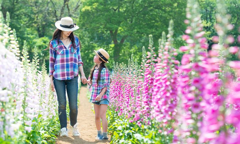 親自身も好奇心旺盛であることが、子どもにいい影響を与える