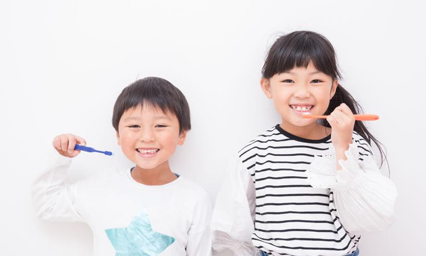 勉強は歯磨きと同じく習慣化するのが良い