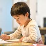 小中学生の宿題は無意味!という報道や情報は、本当?ウソ?