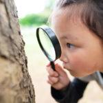 知的好奇心を育てるために必要なことと注意をすること