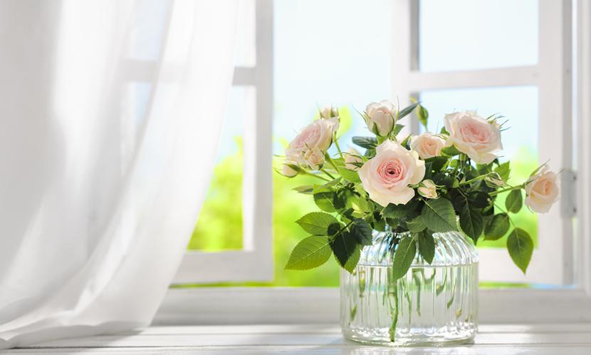 花を見る【勉強のリフレッシュ方法6】